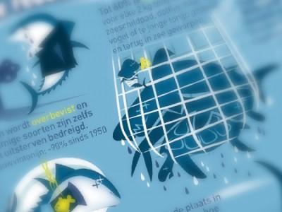 DR17-Web-Seafirst-450px